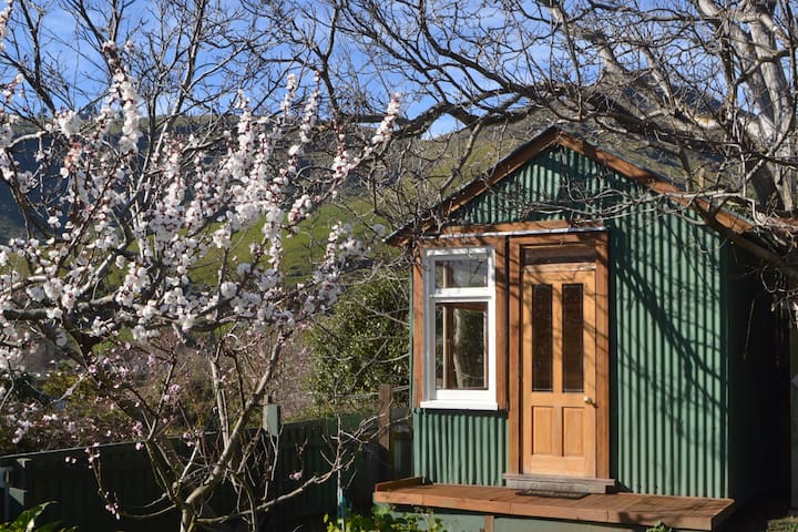 Welcome to Spring at the Tin Kingfisher...