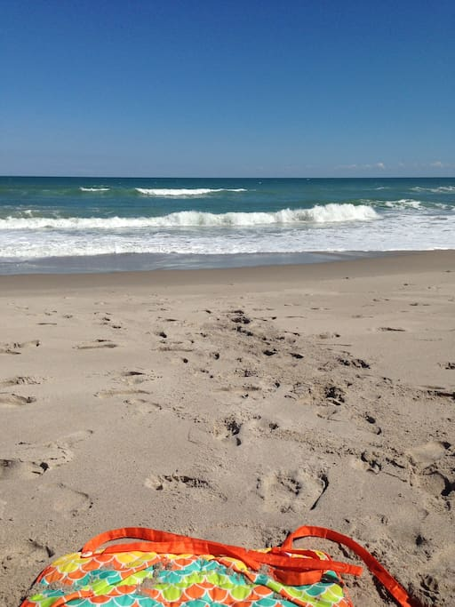 Beautiful beachfront nearby that is also the home to quarter of the United states Green Sea Turtle population