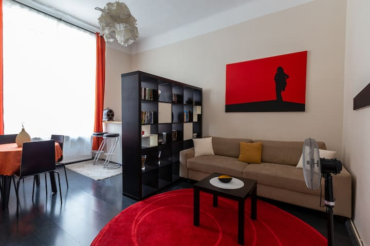 The Apartment (15 min to city center)