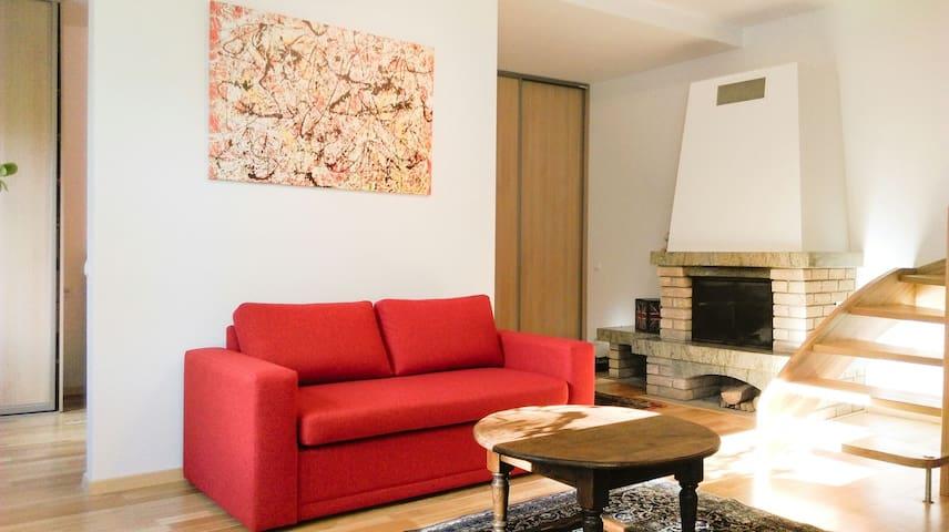 Excellent location oldtown Užupis apartment