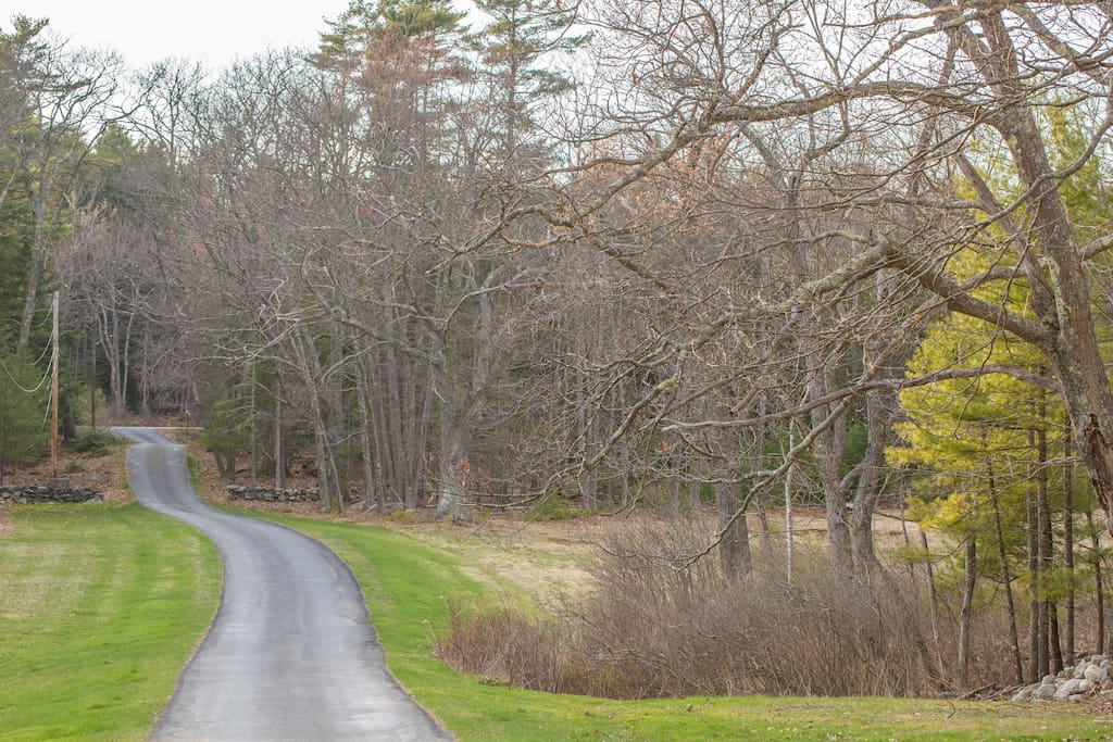 It's a 1/4 mile driveway off the main road down to the cottage. This affords privacy and peace of mind.