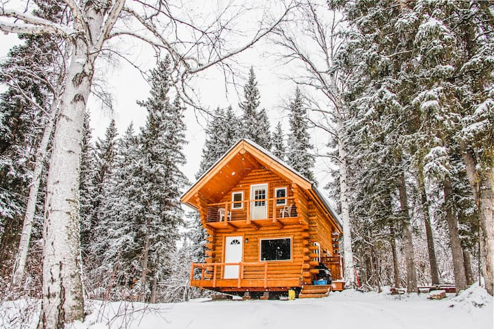 Cozy Alaskan Log Cabin