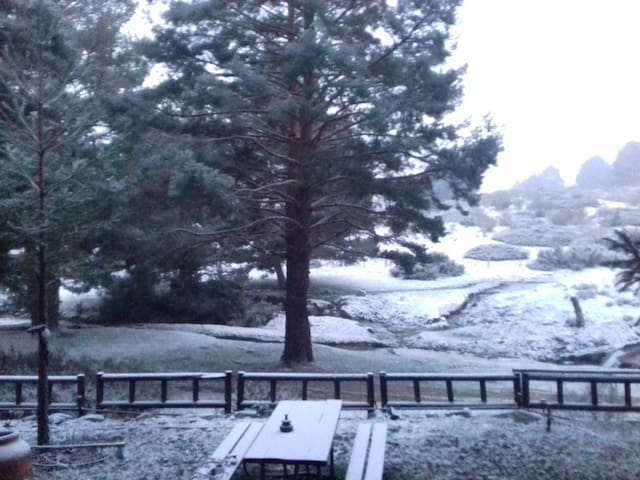 cabaña entre pinos en hoyos del espino