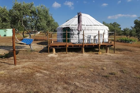 Dreamcatcher Yurt 1