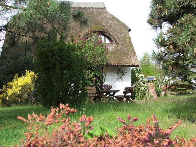Ferienwohnung auf Gartengrundstück - Baabe - Apartment