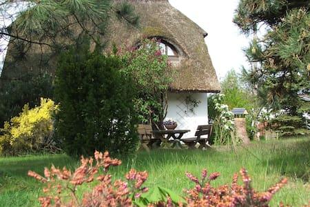 Ferienwohnung auf Gartengrundstück - Baabe