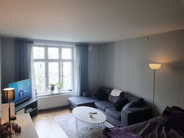 Charming one room apartment in central Gothenburg