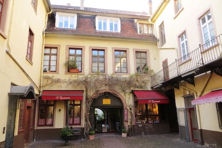 Wohnung Areta im Herzen Heidelbergs