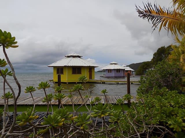 Hotel Roatan Mango Creek Lodge