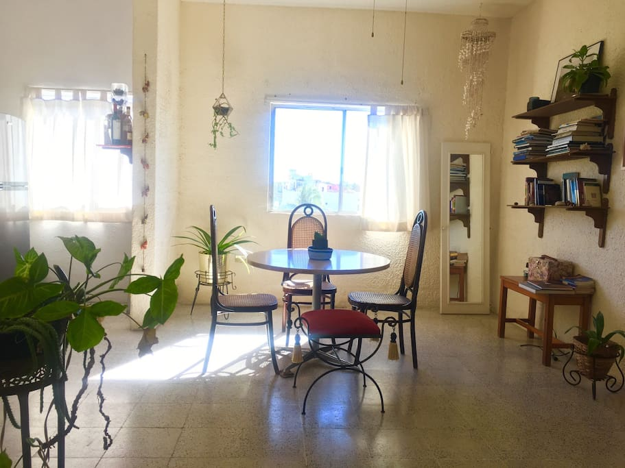 Your appartment at La Paz!