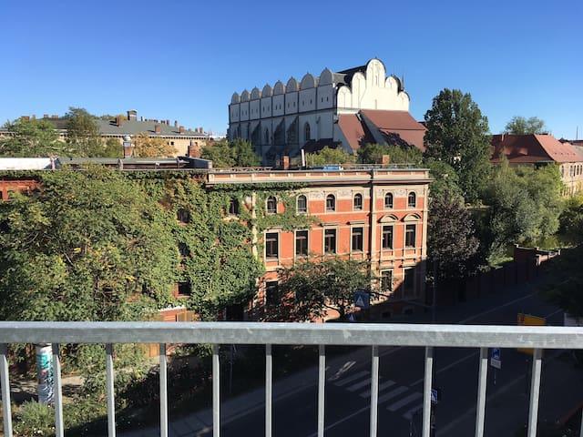 Über der Altstadt am Dom