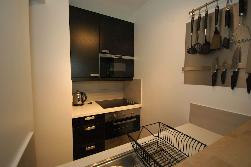 Fully equipped, compact kitchen with oven hob and microwave