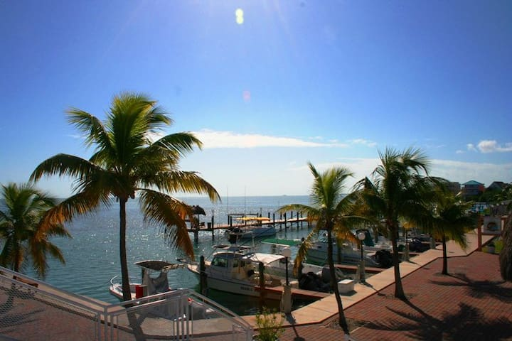 Ocean Isles 118 ~ Tropicana - Marathon - Huoneisto