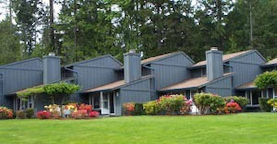 Serene Resort Condo on Hood Canal - Union - Osakehuoneisto