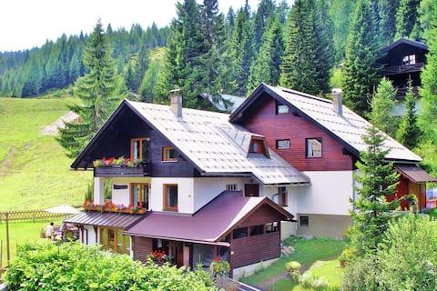 Beautiful Apartment with Sauna, Balcony, Ski Storage