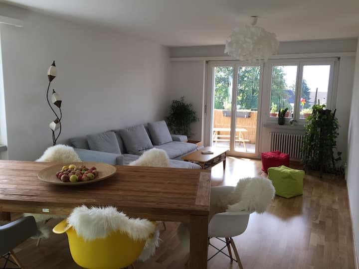 Comfortable apartment with view on Lake Zurich