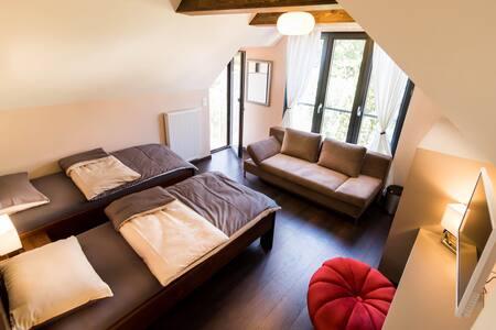 Comfort House Lostorf Room 5 - Lostorf - Bed & Breakfast