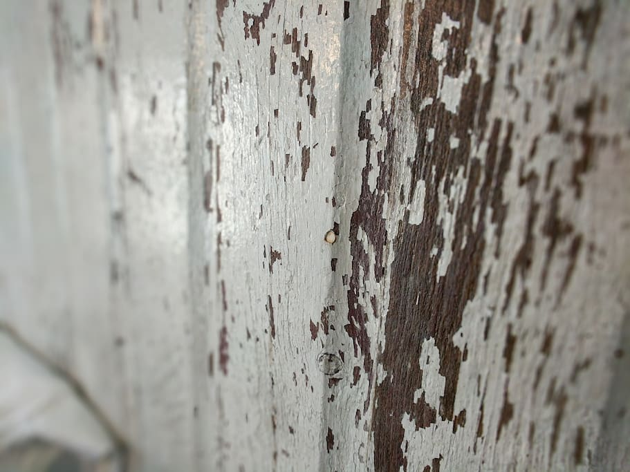 Amazing turn of the century barn door headboard.