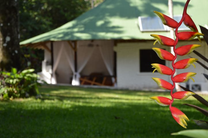 2 Rooms for 6! Relax in the Nature of Dominical