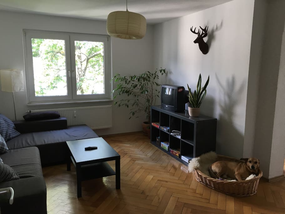 15m zimmer im westend direkt neben messe 2min wohnungen zur miete in frankfurt hessen. Black Bedroom Furniture Sets. Home Design Ideas