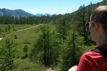 Alta Val Bognanco - Arza