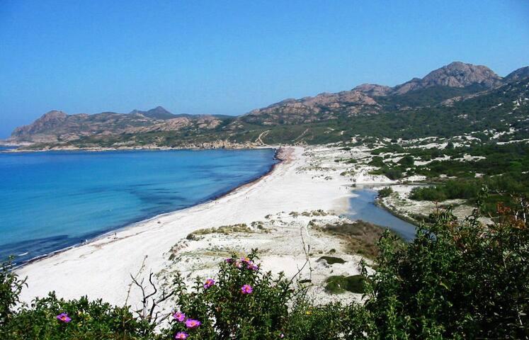La plage de sable fin de L'Ostriconi (18km & 25mn) avec parking gratuit à la porte du désert des Agriates