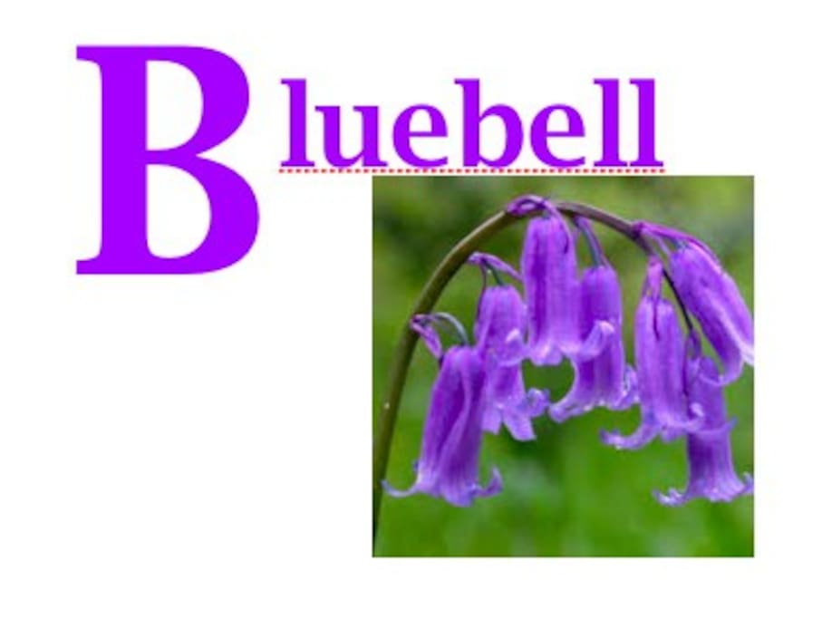 Bluebell Room at the Green Gate Guesthouse