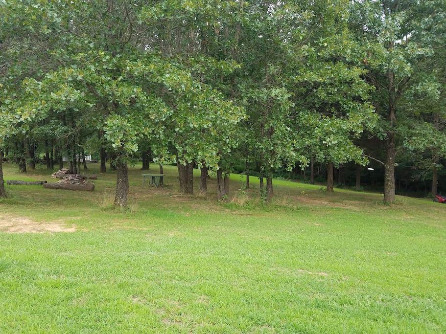 Plenty of outdoor space!
