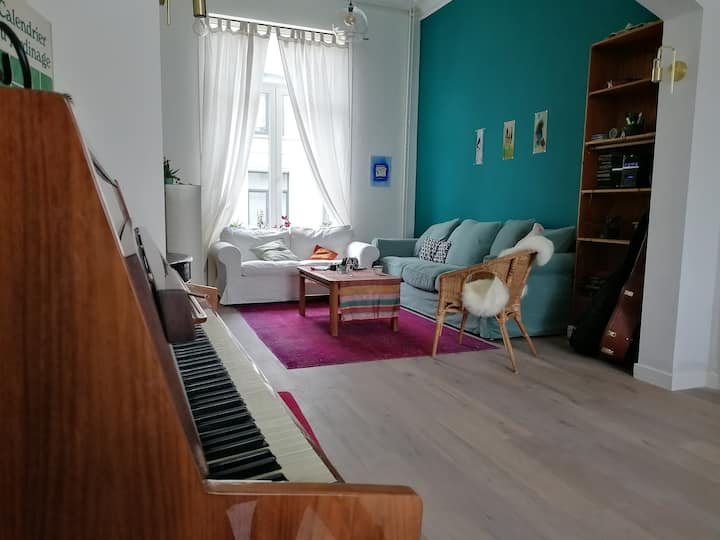 Very cozy apartment in Ixelles, Brussels