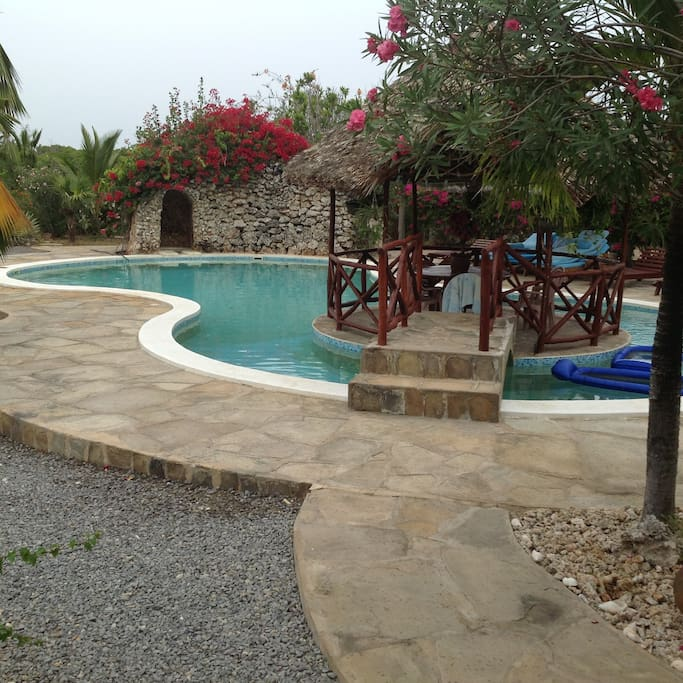 large pool with island dining, outside barbeque and drinking area plus shower and toilet