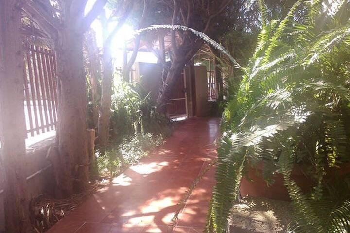 Villa intera con giardino e parcheggio - Valenzano - Villa