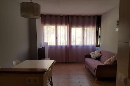Apartamento en Esterri d'Àneu - Esterri d'Àneu - Apartemen