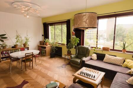 Chambre agréable et tranquille. Vue sur les étangs - Ixelles - Huoneisto