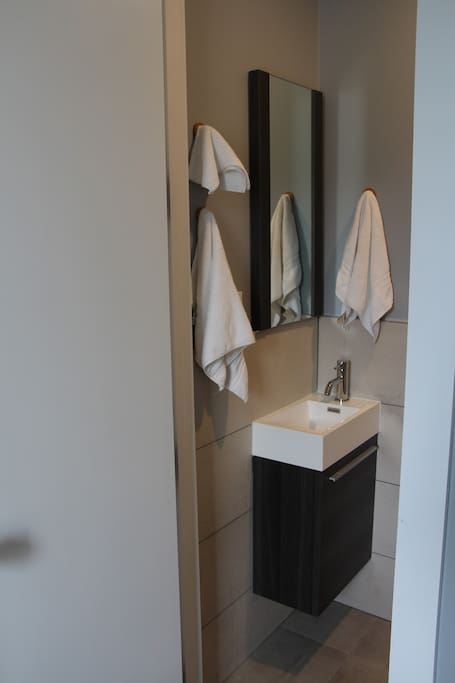 Private half bathroom with sink, mirror, and private toilet.  Entry is located inside bedroom.  Private access from bedroom.