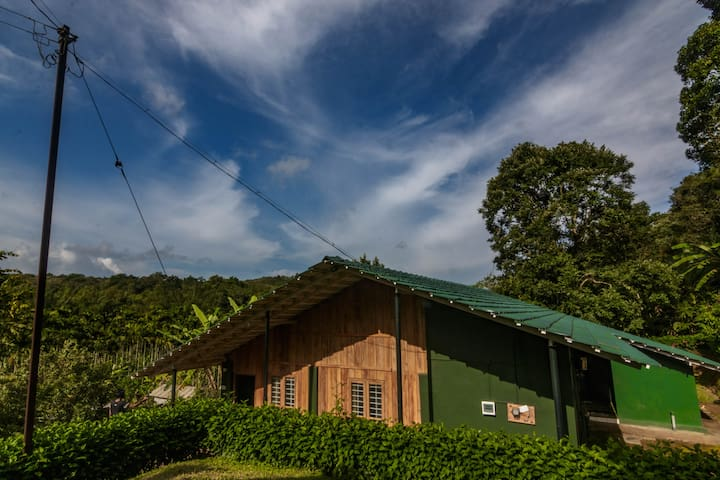 Deluxe suite in Mudumalai forest range