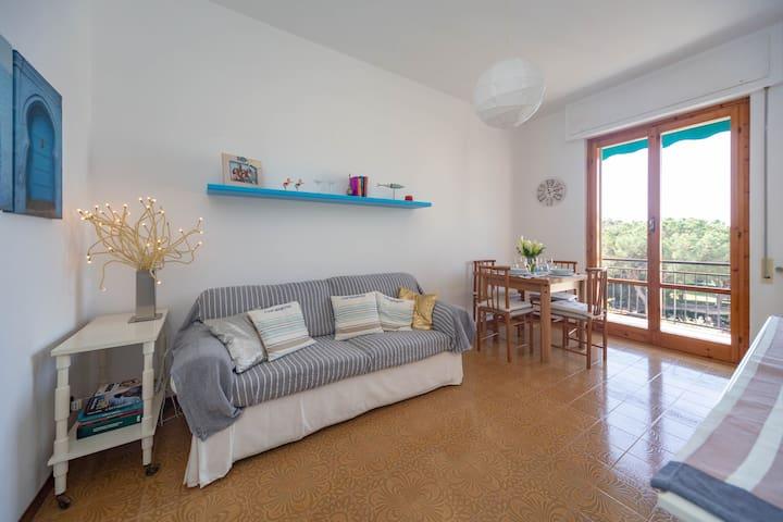 La sala con divano letto matrimoniale  Living room with sleeping sofa