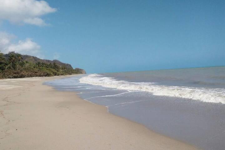 Bahía Palma Hostal Palomino - Palomino