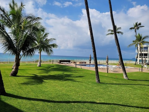 Open Concept 1 Bedroom Beach Front unit with Pool