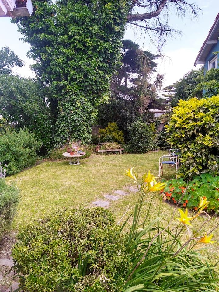 Casa Playa Grande con increible jardin-