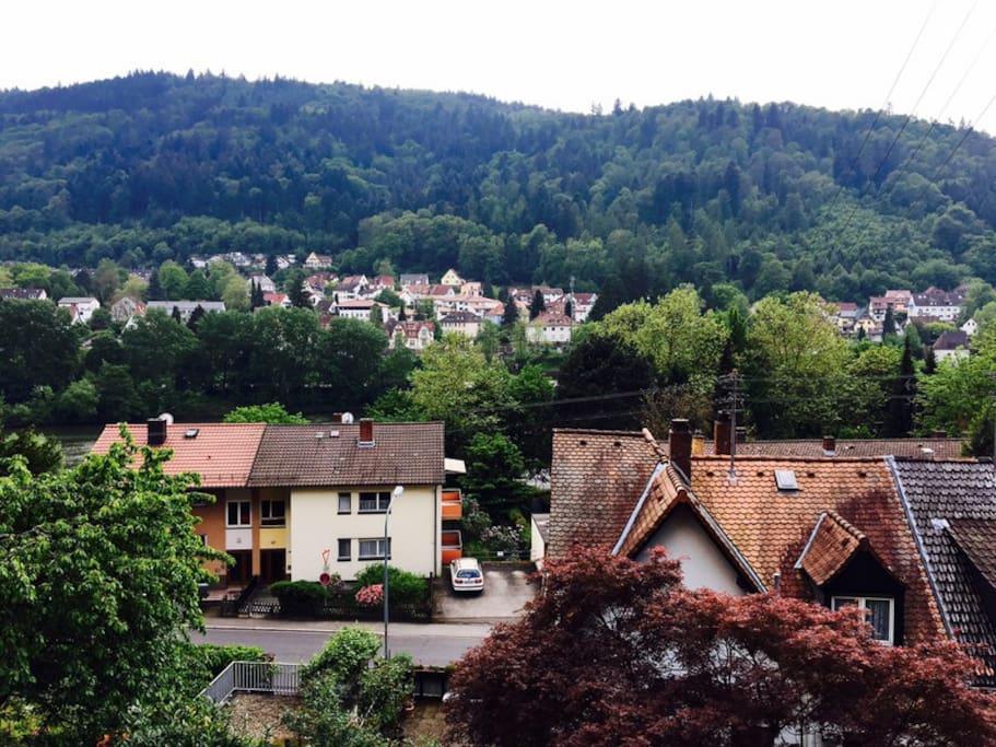 Ausblick auf Neckar und gegenüberliegende Seite Schlierbach