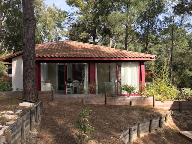 Villa dans la pinède, Vue sur la foret Landaise - Moliets-et-Maa - Casa