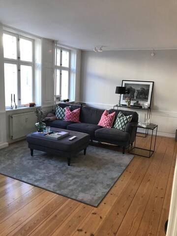 Stylish Scandinavian Apartment in the heart of CPH