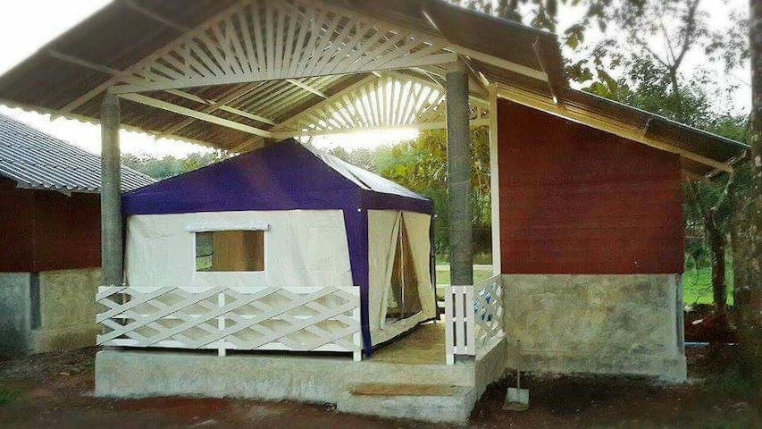 Tent house & organic farm stay