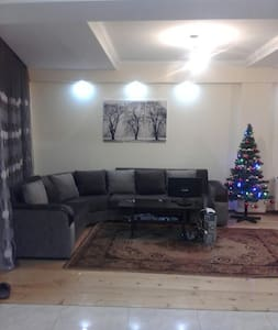 Borjomi Rooms for Rent - Borjomi
