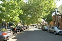 Tree-lined street front of house