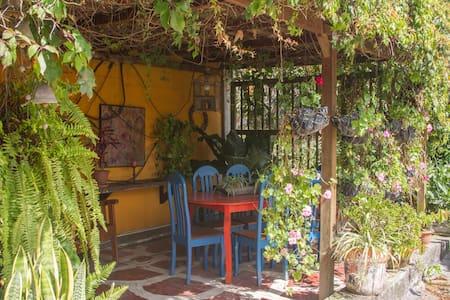 Perfect loction in Guatemala City 2 - Guatemala