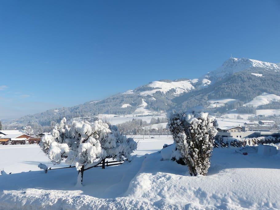 Wintergarten mit Blick zum Kitzbüheler Horn