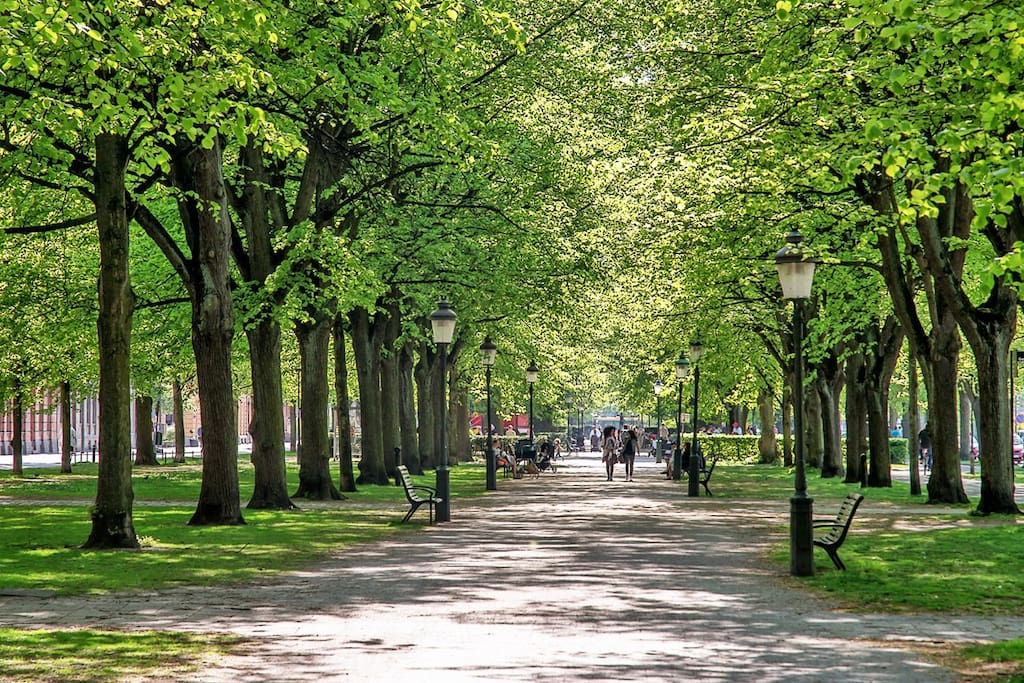 Close to the apartment you will find Kungsgatan, a beautiful street that will take you all the way downtown in 15 minutes on foot.