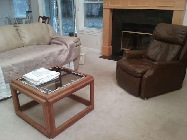 No Frills Couch in gorgeous house in cul-de-sac