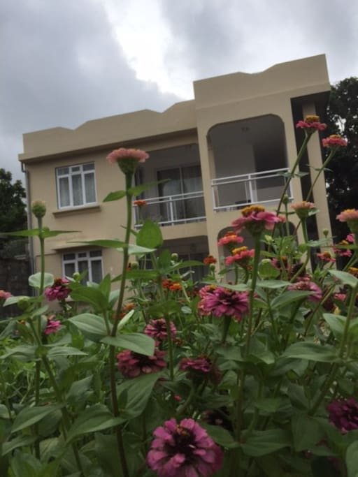 The building is in a flowery and vegetable garden